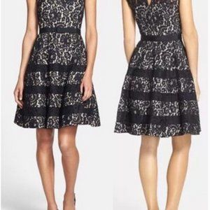 Eliza J Black Belted Cap Sleeve Lace & Flare Dress